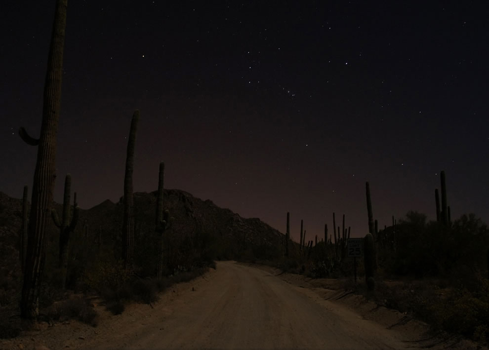 Moonlit Hohokam Road, Saguaro National Park West, Arizona