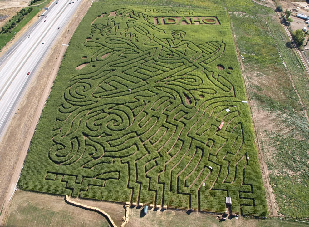 Aerial of Discover Idaho maze, carved into 18 acres of corn