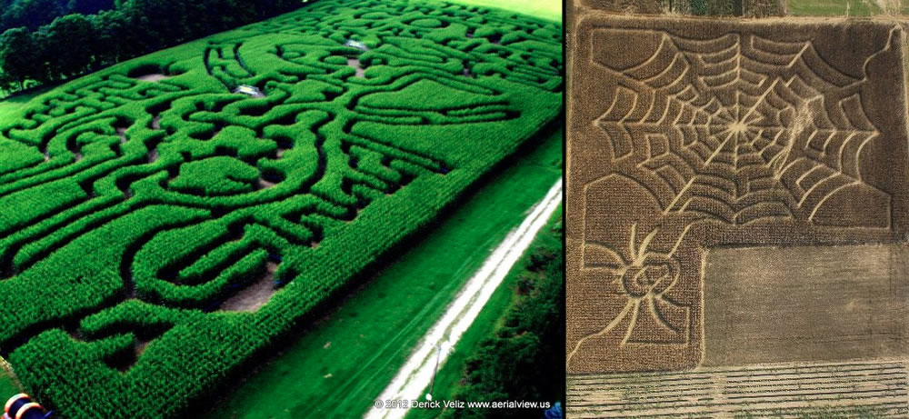 Bird's Eye and aerial of corn mazes
