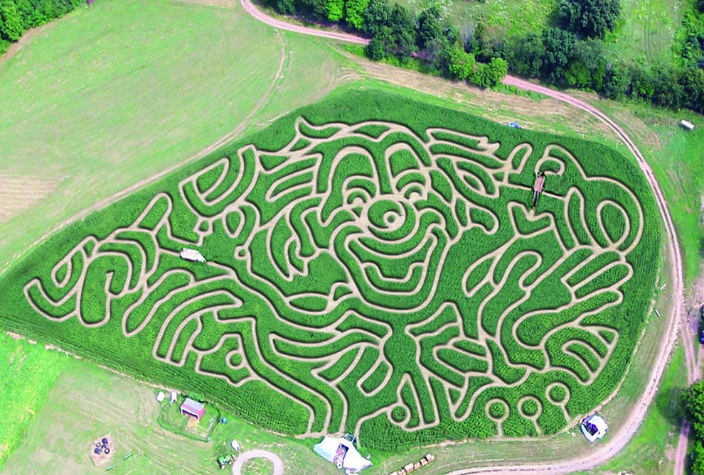 Foster Family Farm's 2012 circus-themed maze covers approximately 5 acres of corn field