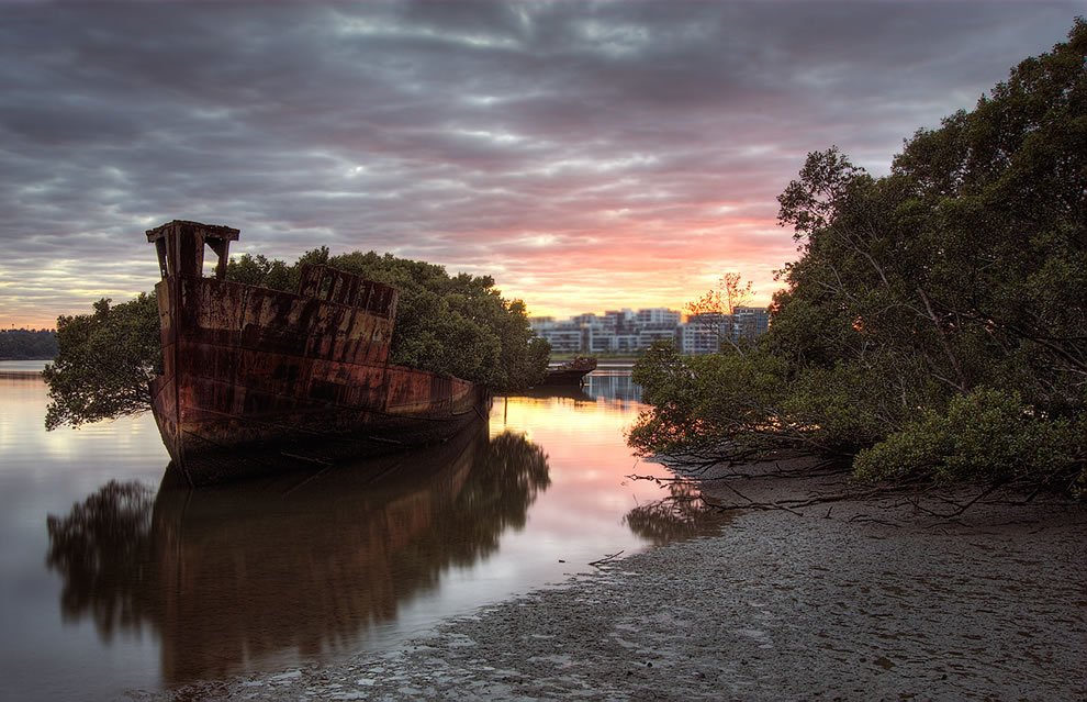 Nature reclaiming shipwreck at Homebush Bay, Australia