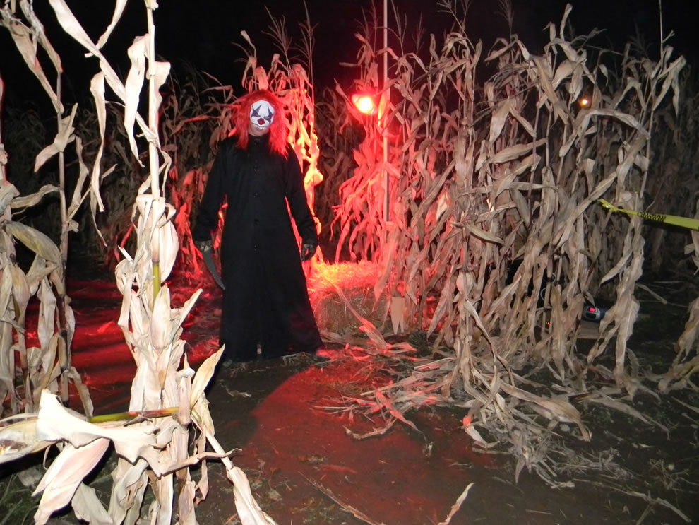 Killer clown, slasher in haunted corn maze