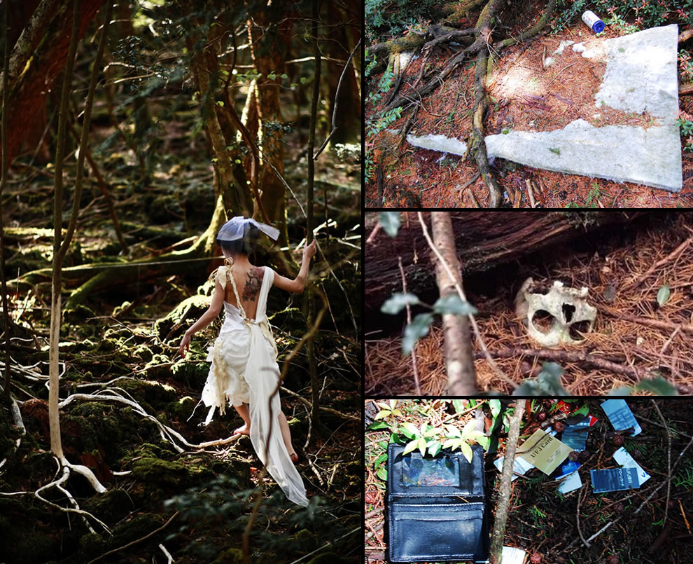 Suicides beyond the blocked and closed walking paths at Aokigahara Forest