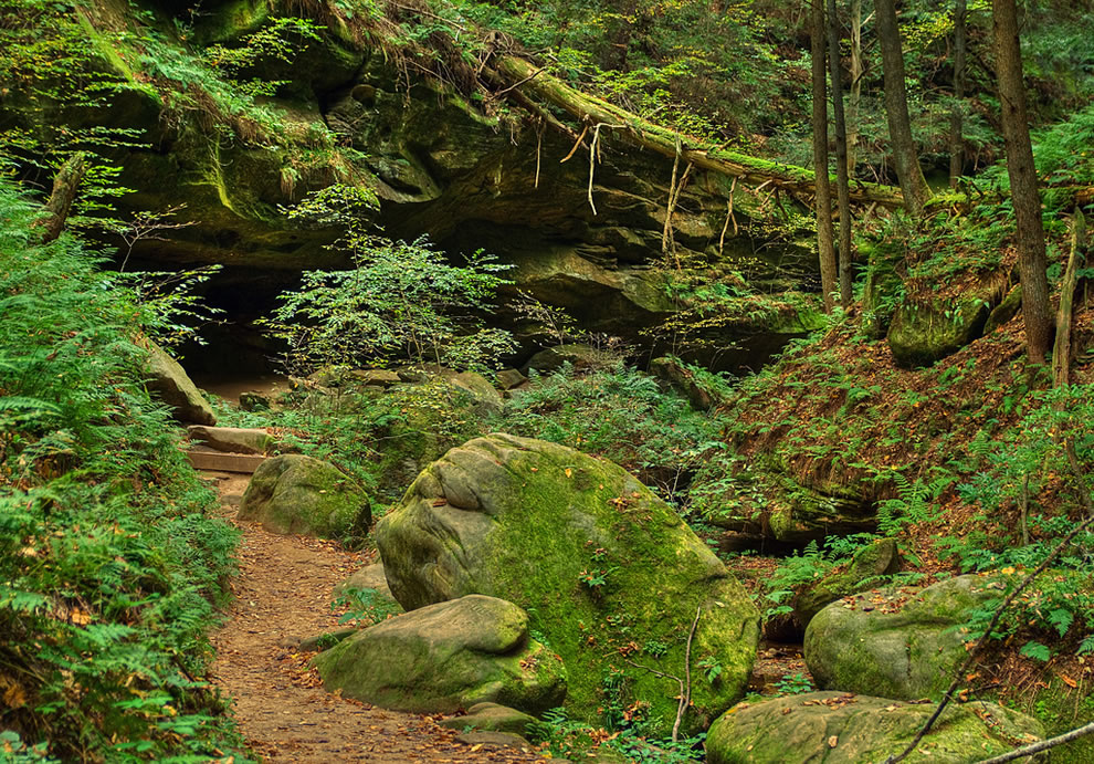 A day in the forest at Hocking Hills