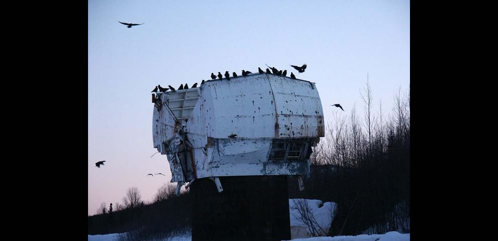 Cold War-era NIKE missile site radar dome with a flock of ravens near Eielson AFB, Alaska