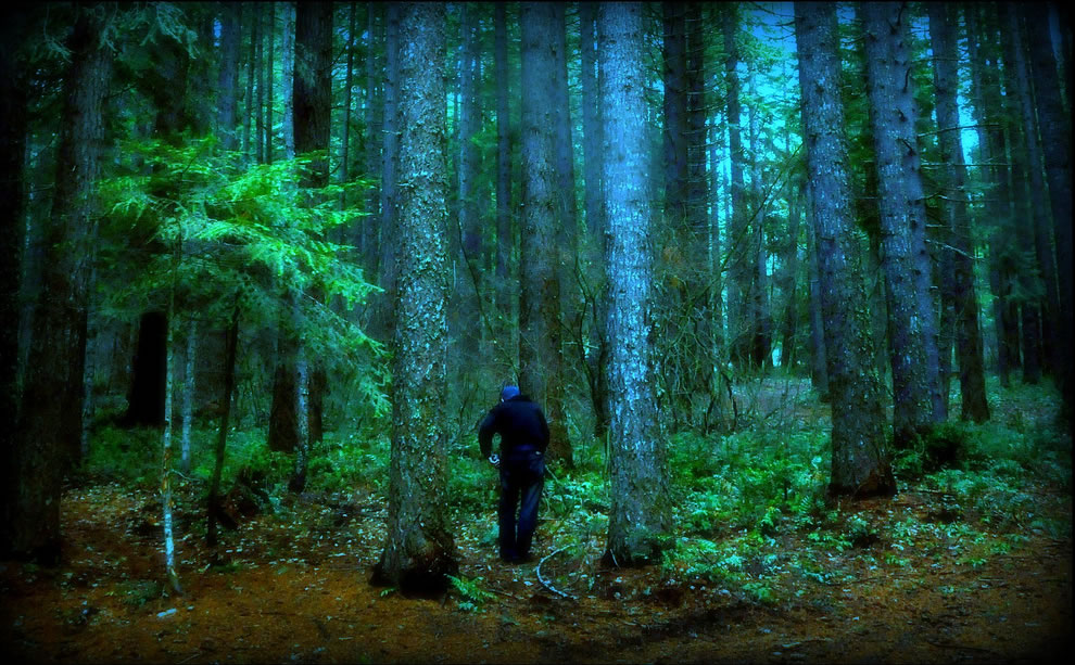 Deep in the woods when you run into someone else alone