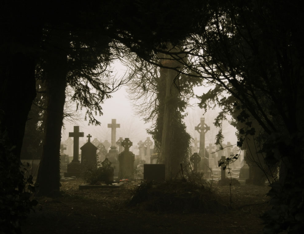 Foggy Graves Through Trees