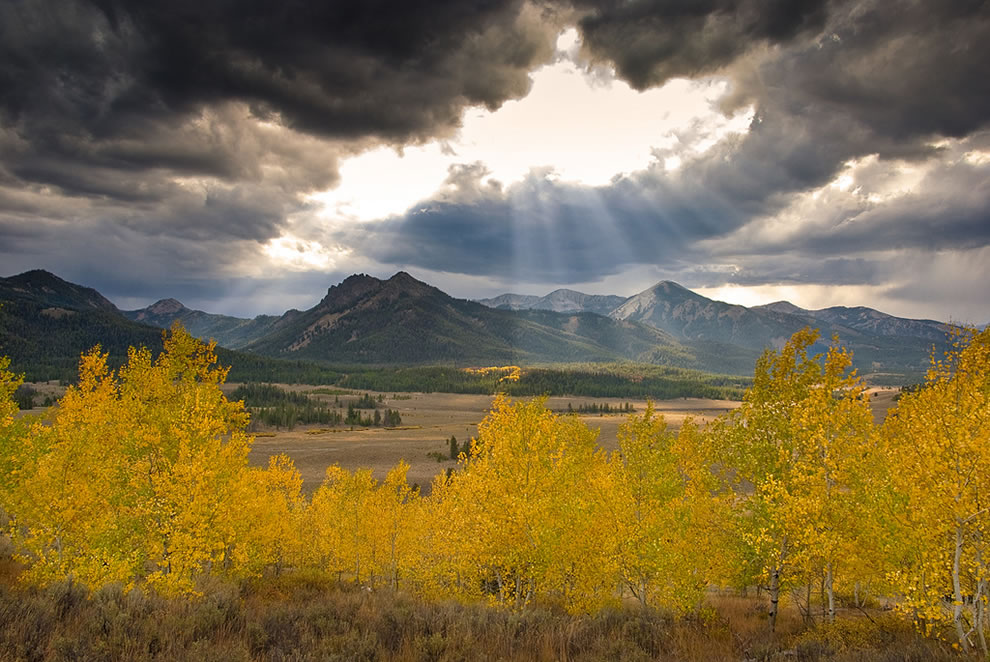 God's Rays and golden Aspens at Galena Summit in Idaho