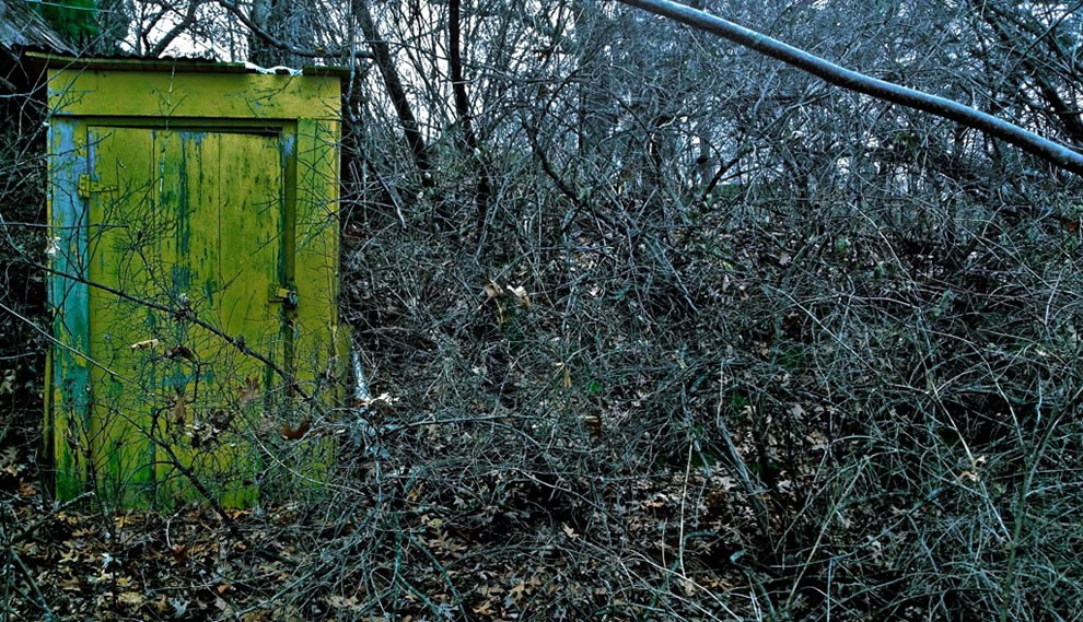 Horror when coming upon an abandoned locked shack in a creepy forest