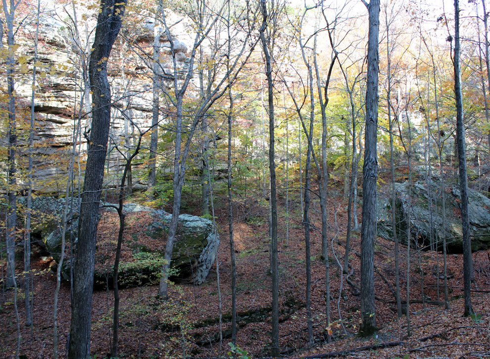 Immense and ancient fallen rocks at Pounds Hollow