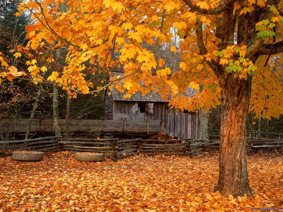 John Cable Mill, Cades Cove at Great Smoky Mountains National Park in Tennessee