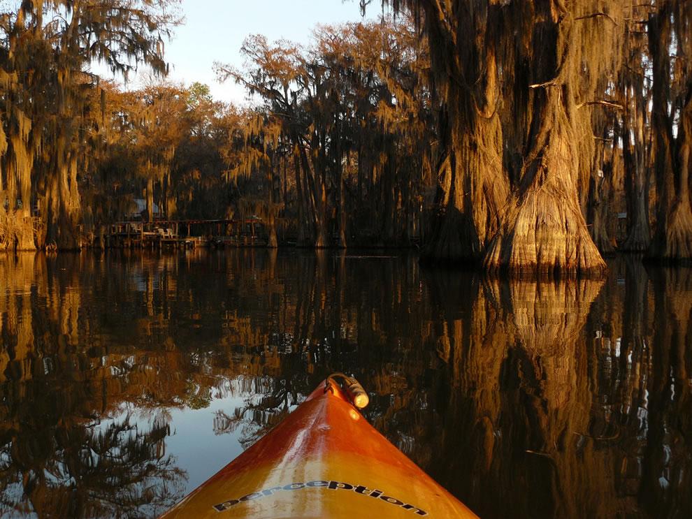 Kayaking Around Caddo Lake Docks