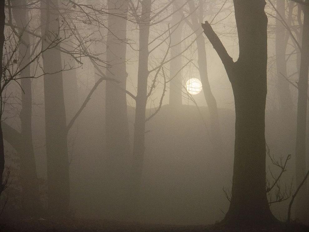 Misty Sunrise (sans zombies)