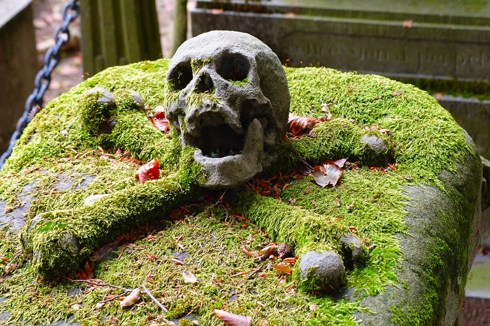 Mossy skull and crossbones at the Brugge cemetery, Belgium