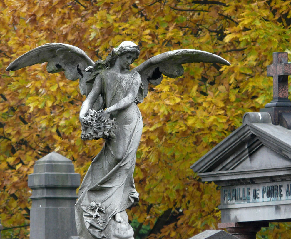 Mourning angel and golden leafs of fall, cemetery of Laeken, Brussels