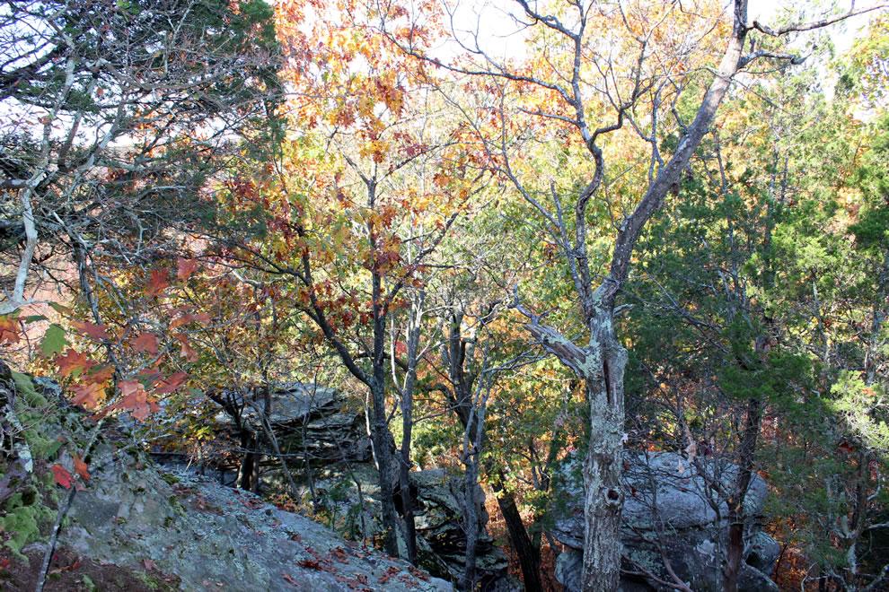 October 2012 climbing Garden of the Gods in autumn