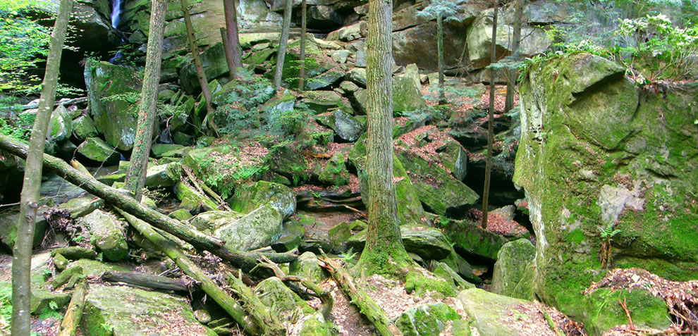 Panorama shot of many of the boulders and trees that are found around the pool that forms at the bottom of the Broken Rock Falls - Hocking Hills State Park nature