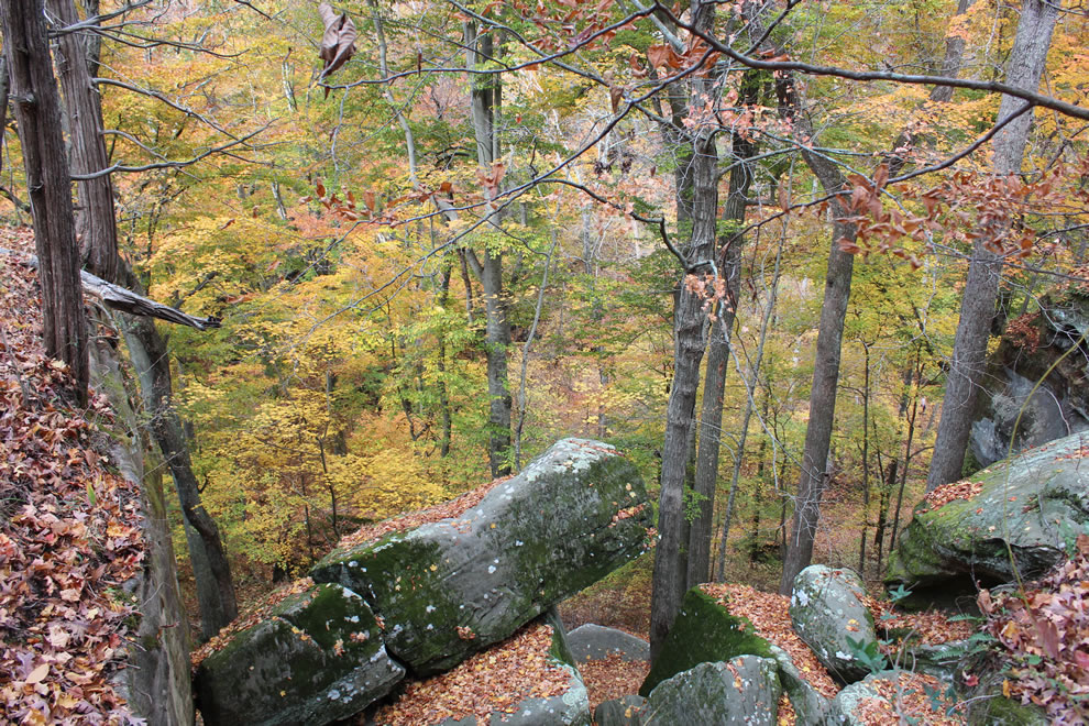Rim Rock overlooking Pounds Hollow