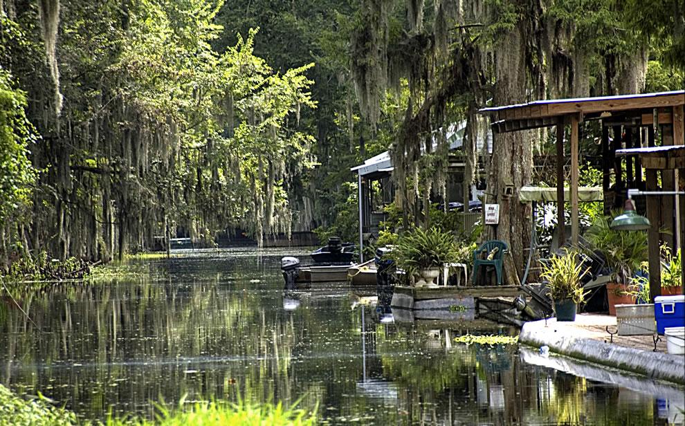 Spanish moss on Louisiana canal at Lake Verret
