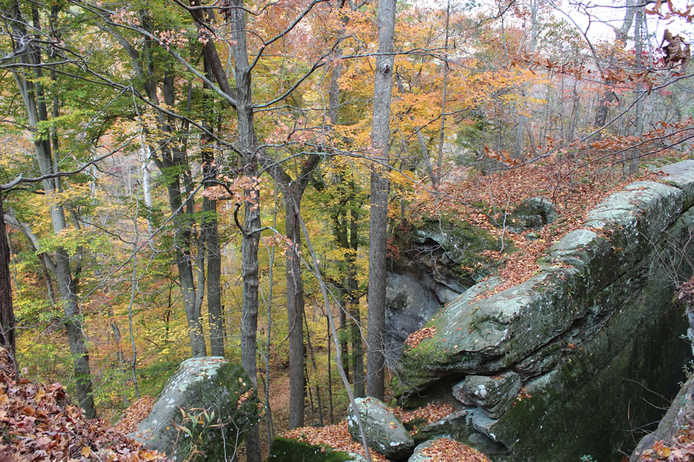 Top of Rim Rock near descending stairs to Pounds Hollow
