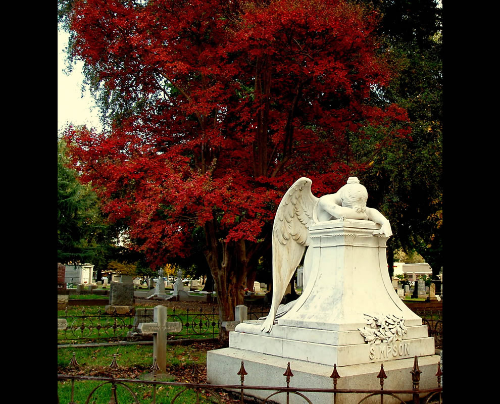 Weeping Angel in the Fall