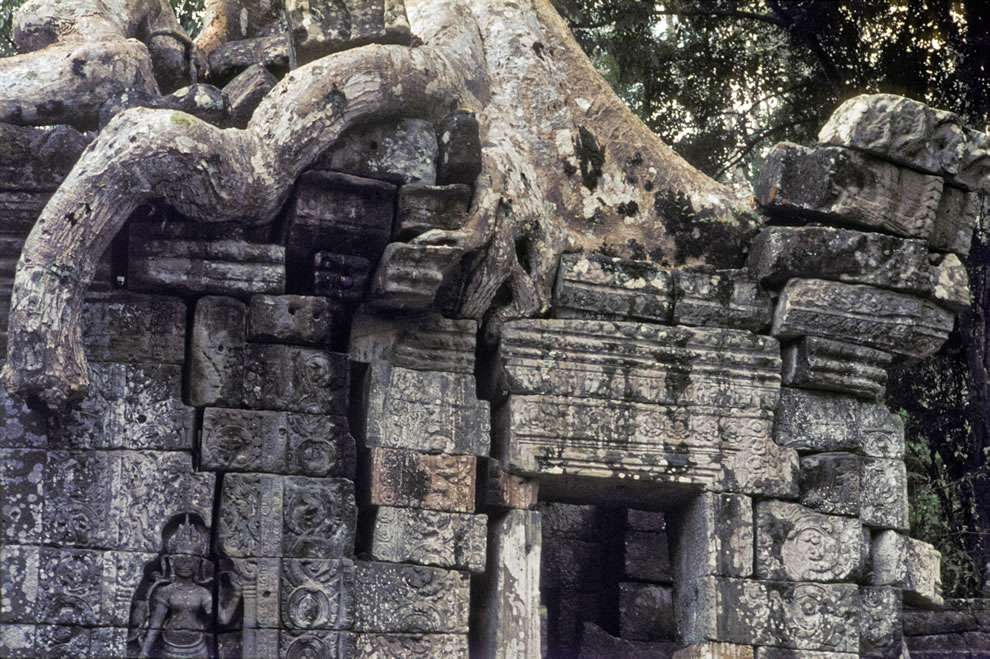 1965 Crushed by the weight of time at Angkor Wat, Kamboscha