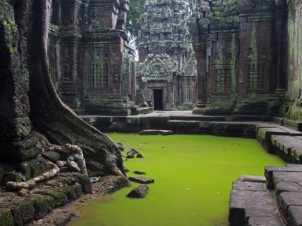 Echoes of Silence; the beauty and mystical ambiance of Ta Prohm. Angkor, Cambodia