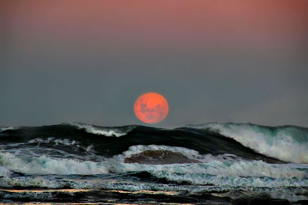 Just Rising Harvest Moon