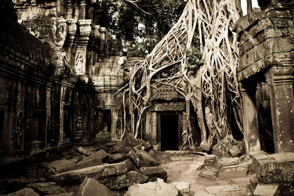 Tomb Raider (Ta Prohm, Siem Reap, Cambodia)