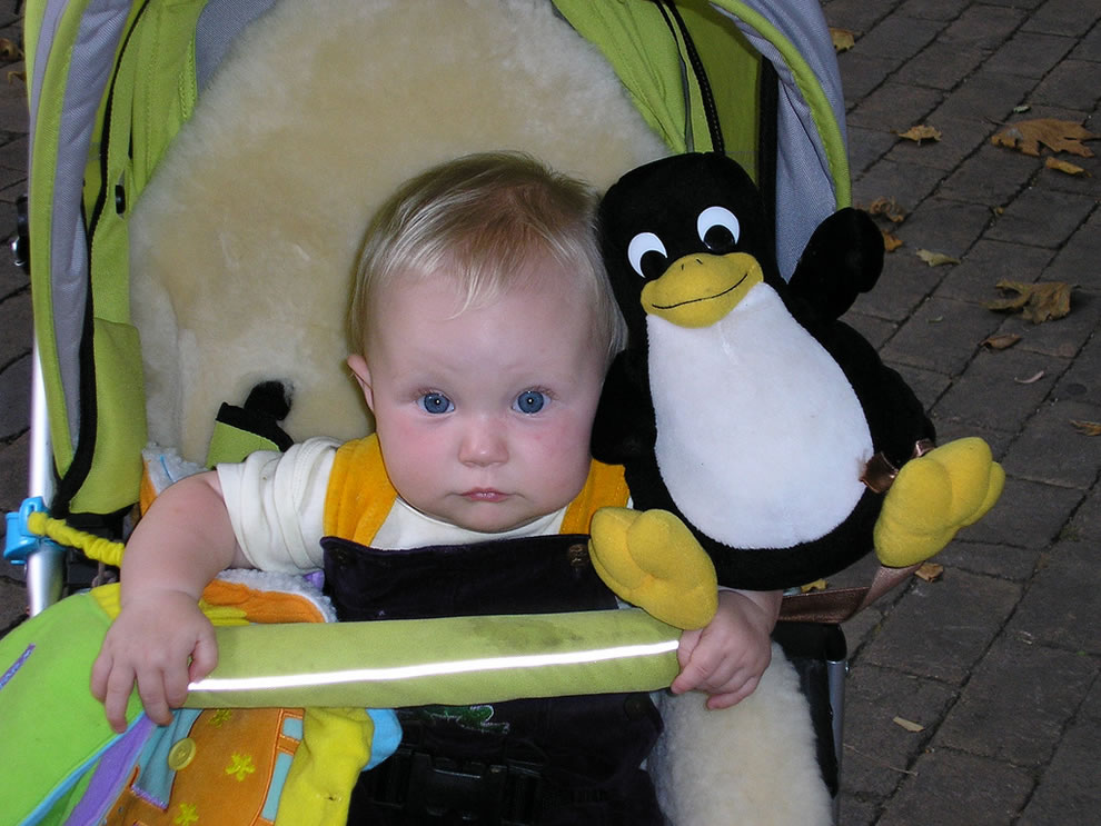 Tux and developer baby