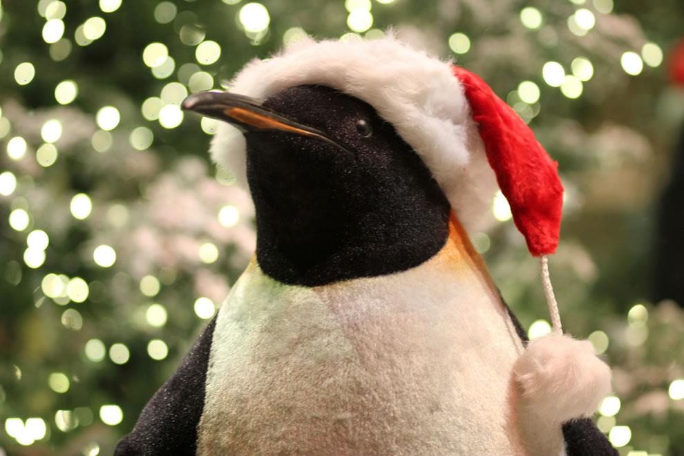 Bellagio Christmas garden peguin