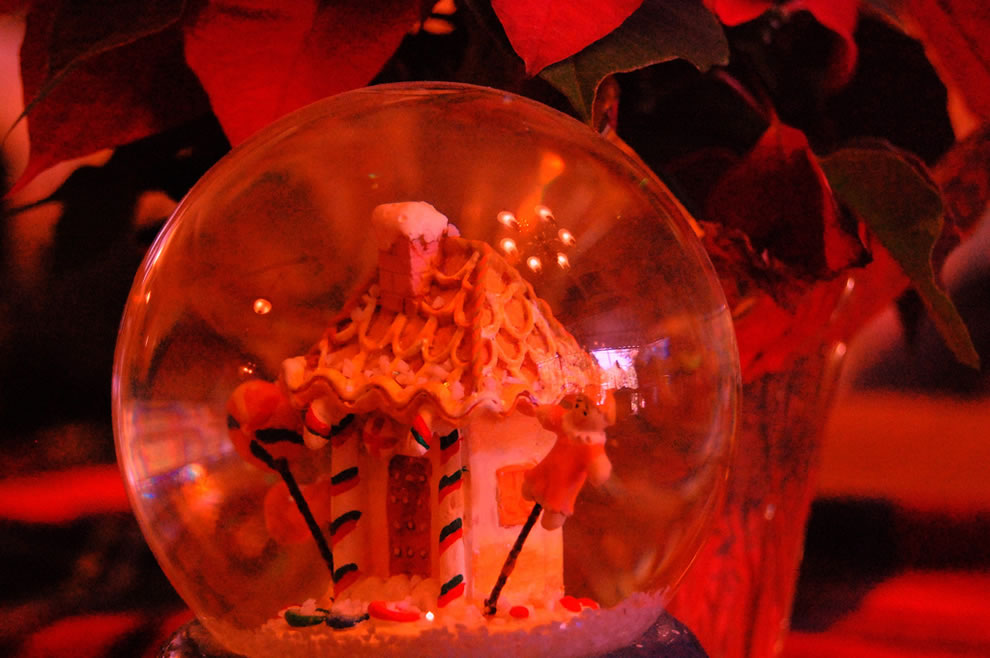 Reflections of Christmases Past