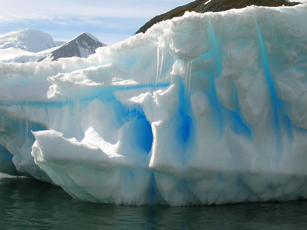 Boat Trip To Cuverville Island (AKA Iceberg Fiesta)