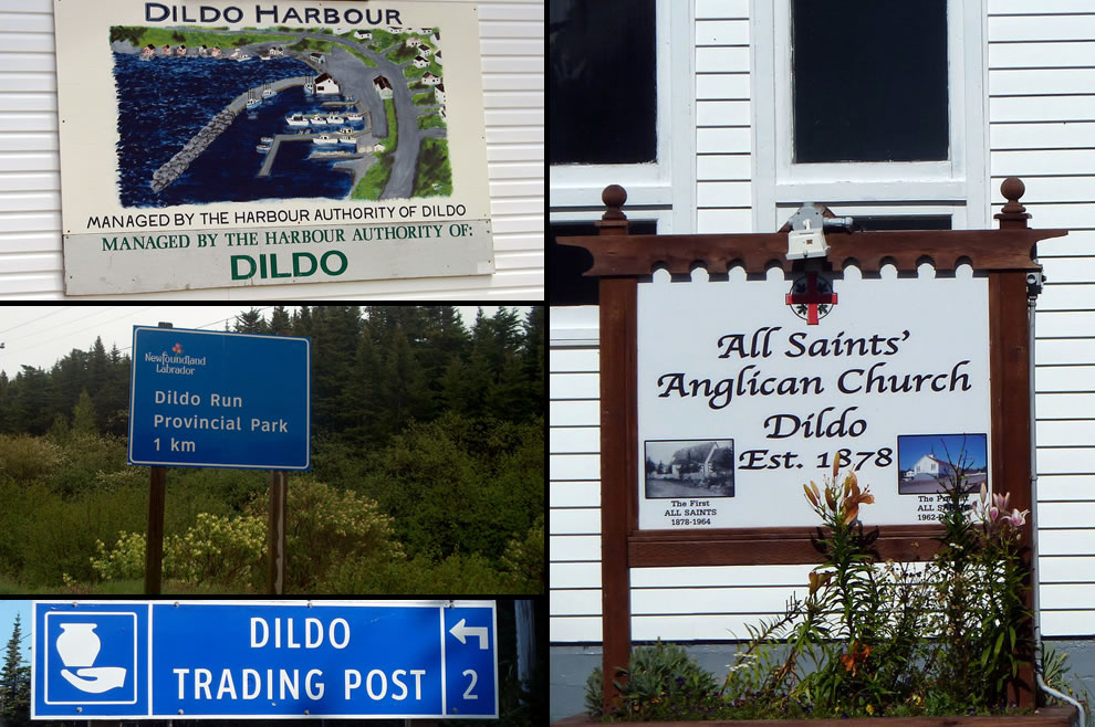 Dildo is a town on the island of Newfoundland, in the province of Newfoundland and Labrador, Canada