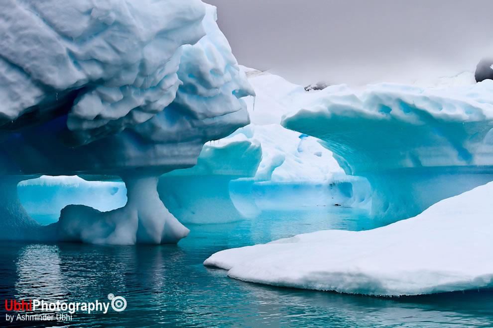Icebergs in pleneau bay antarctica