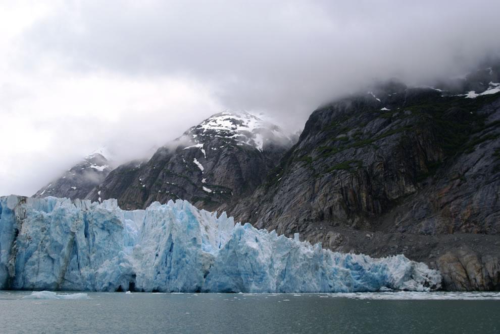 Lamplugh Glacier, Glacier Bay's Glaciers