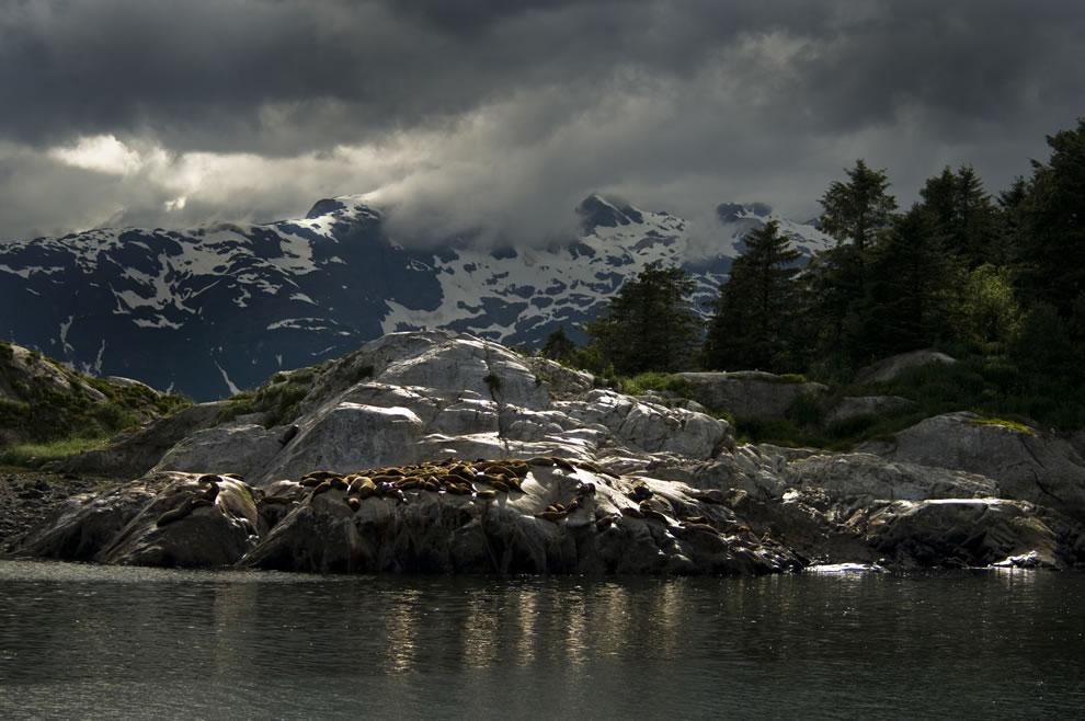 The Marble Islands, Alaska Glacier Bay National Park