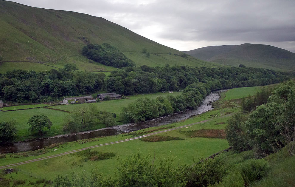 Heart-shaped forest on the hillside of Howgill Fells, England