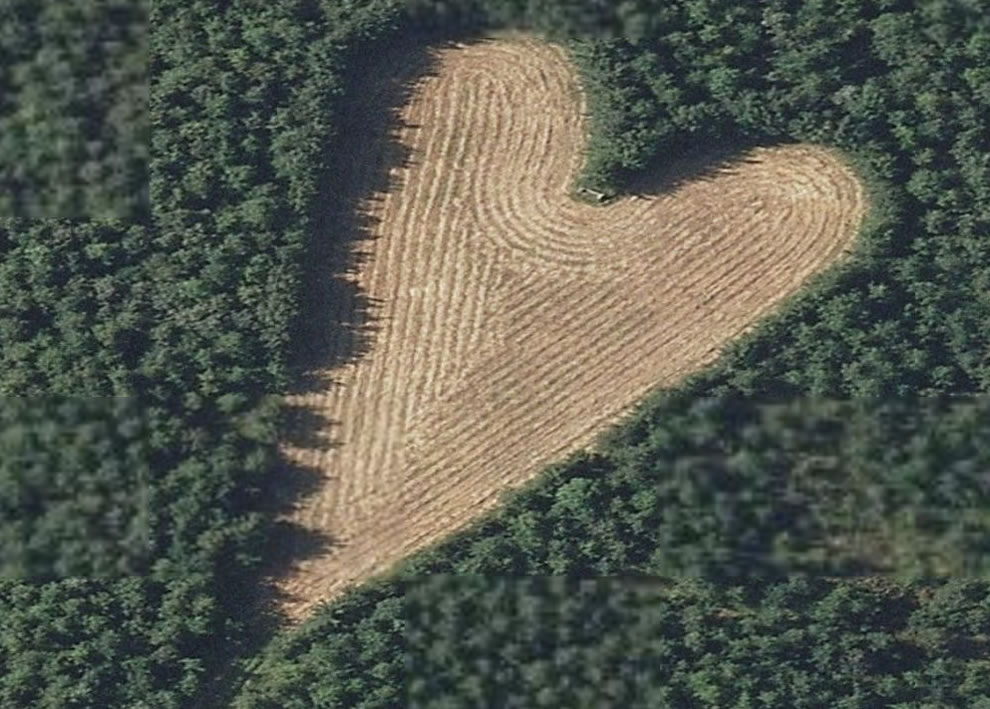 Heart-shaped meadow in South Gloucestershire, UK, loving tribute from farmer for his deceased wife