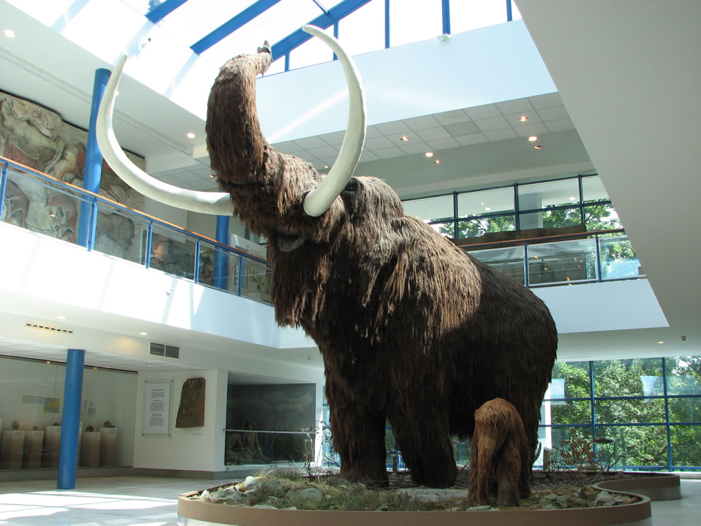 Life-sized models of a Woolly Mammoth and a baby Woolly Mammoth in the Brno museum Anthropos
