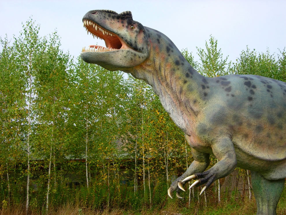 Model of allosaurus in Bałtow Jurassic Park, Bałtów, Poland