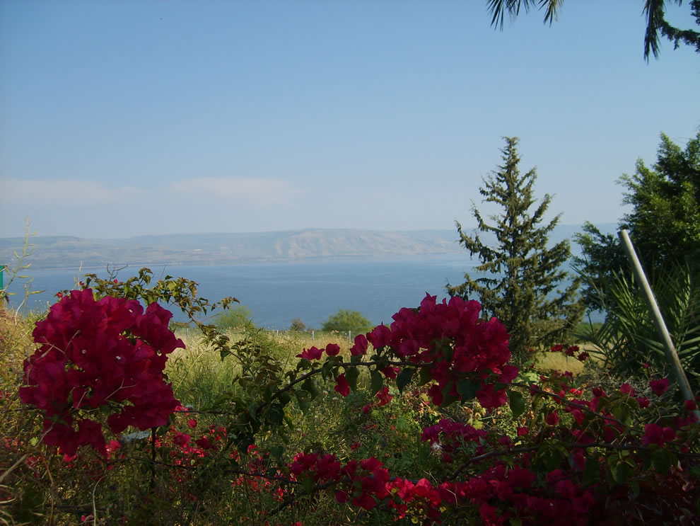 Mount of Beatitudes view at the Sea of Galilee with the Golan heights at the background