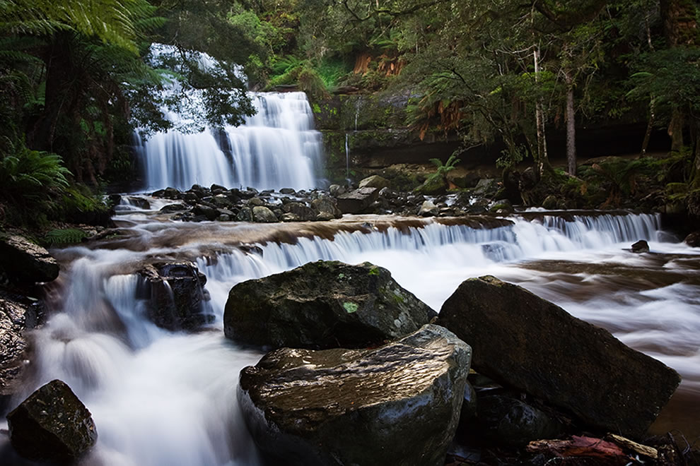 Liffey Falls Tasmanian Wilderness, part of Tasmanian Wilderness World Heritage Area
