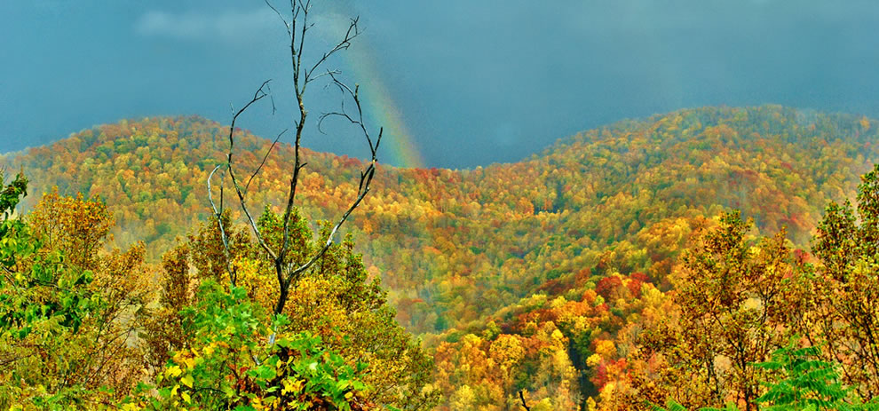 Every color of the rainbow, rainbow and autumn at the Great Smokies