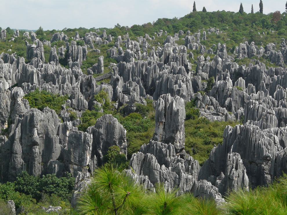 Kunming's Stone Forest