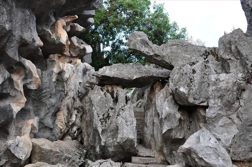 Shilin Stone Forest, One of the World's Natural Wonders