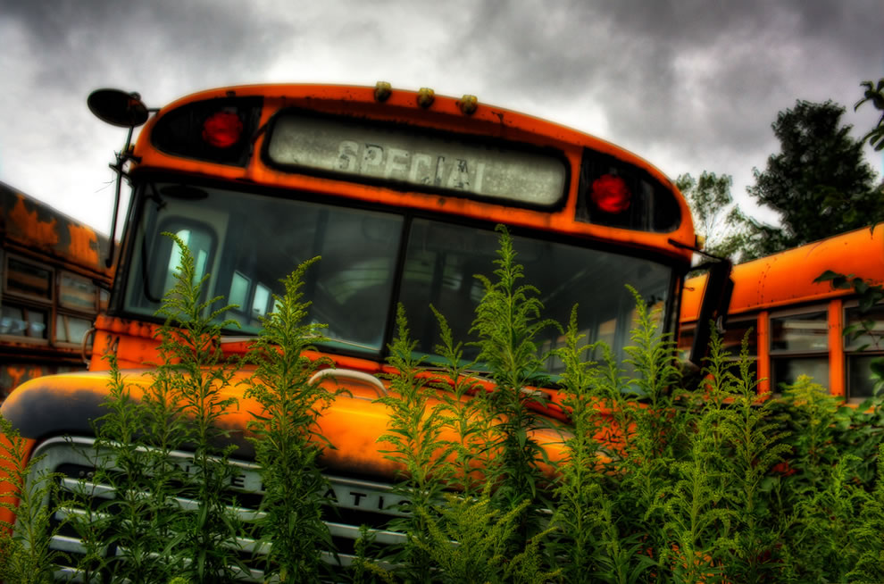 Abandoned Special bus