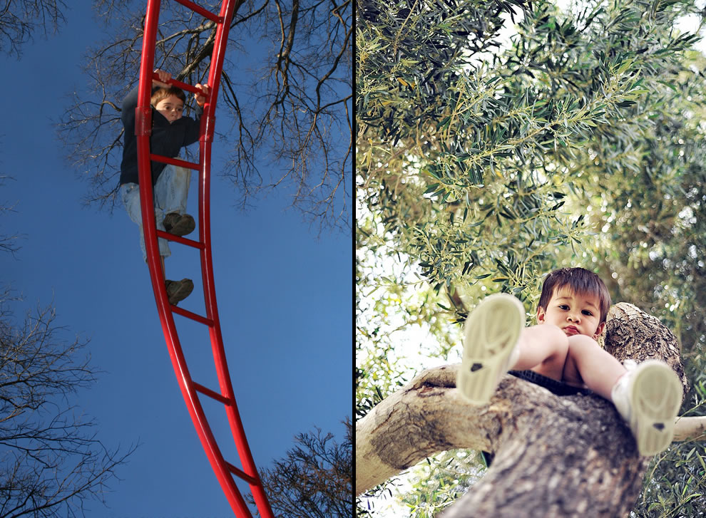 Climbing seemed like a good idea at the time