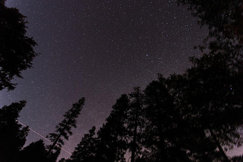 Dark Canyon Campground in the San Bernadino National Forest, Idyllwild, California