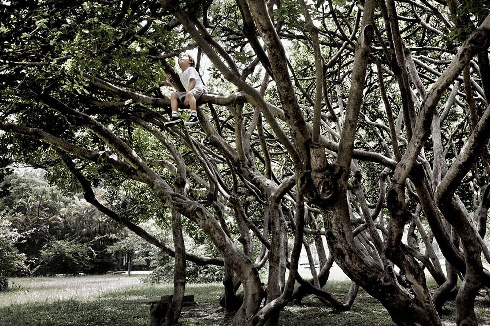 Little boy climbing